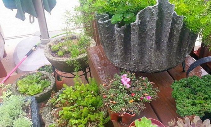 вот такие поделки могут украсить ваш садовый участок!